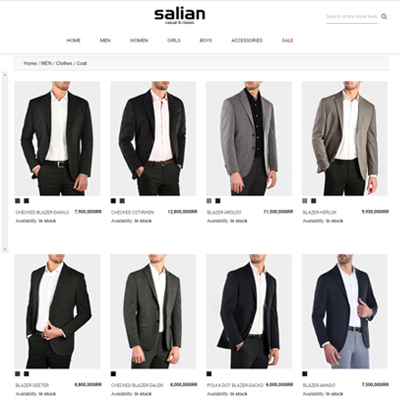 Salian Retail Pro Integration